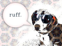 Cool Pup Graphic