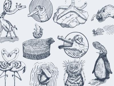 Inktober 2017 Animals
