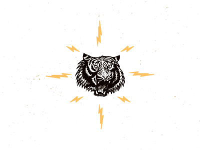 Project Desert Tiger Electric Icon