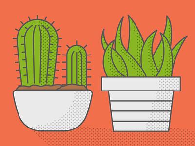 Plants plant illustration