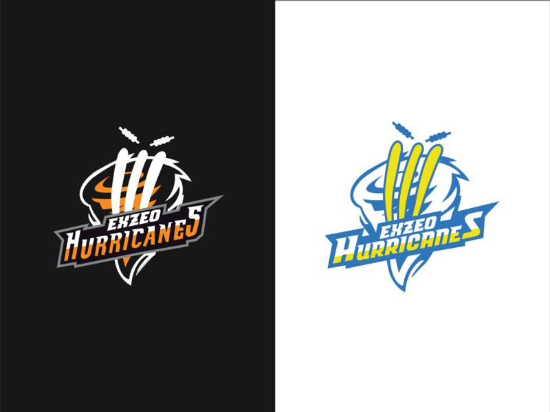 Exzeo Hurrican logo branding dribbble best shot illustration stump hurricane wicket tournament cricket logodesign