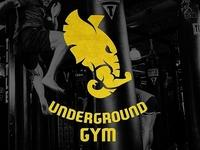 Underground Gym logo. Georgia. Tbilisi