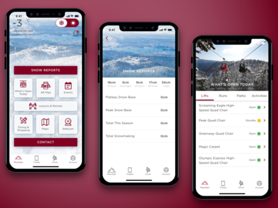 Grouse Mountain travel information outdoor sports outdoors sports redesign resort skiiing mobileapp mobile mountain clean color