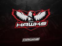 Iron Hawks eSports