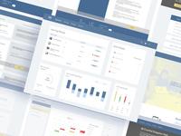 MoMega Learning Management System UX UI Design