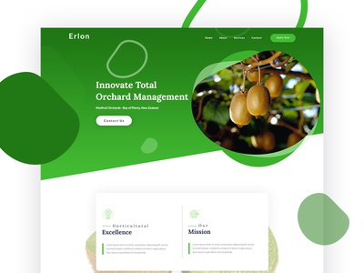 Erlonlimited Kiwifruit Home Page Dribble