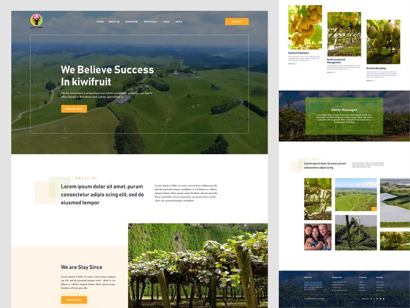 Kiwi Hard Diven Web Ui V2 product color page web typography landing landing page interface design ux website ui food organic fresh fruit kiwifruit kiwi