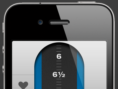iPhone App Input Screen