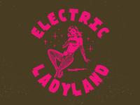 Electric Lady Land