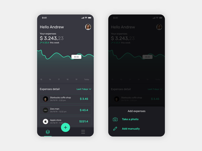 Expense Tracking App mobile layout sketch ios charts icons ux ui interfaces tracking expenses app