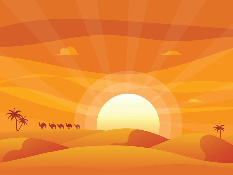 Desert Sunset vector illustrtation dusk sun camel sunset desert