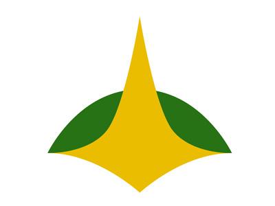 Brasília Airport Promo Logo logo luciocosta niemeyer brasília