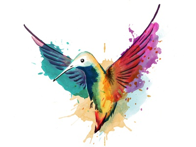Watercolor Hummingbird rainbow hummingbird watercolor