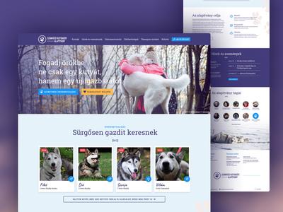 Website design for a foundation
