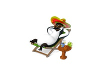 Penguin Summer