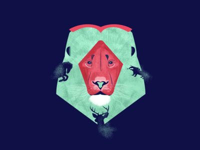 Lion - King of the jungle - Energy drink branding