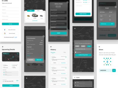 Taxi and delivery app Concept