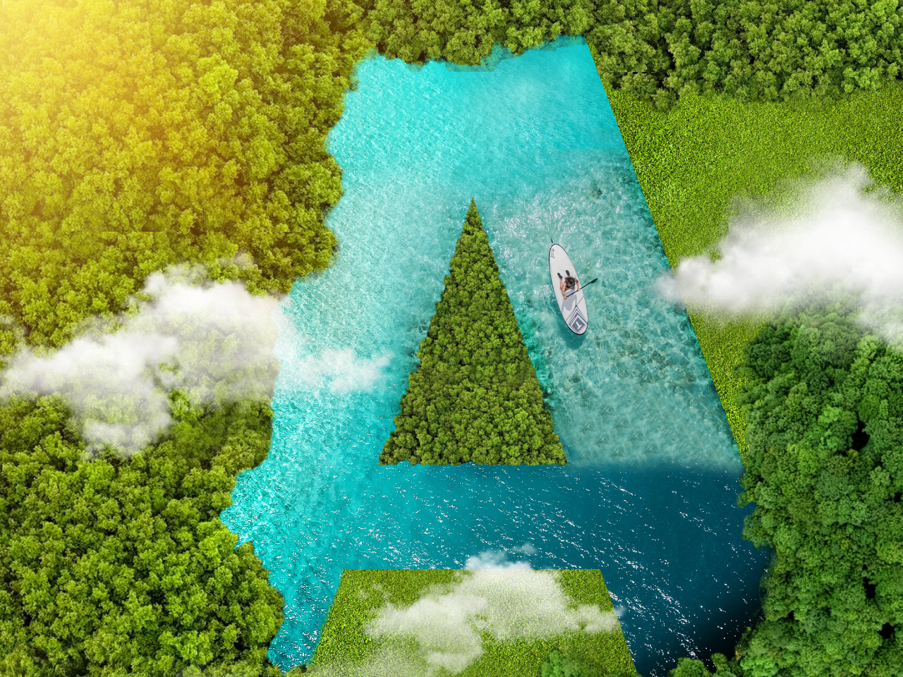 A for Aerial sky leaves plants 36dayoftype 36 days of type