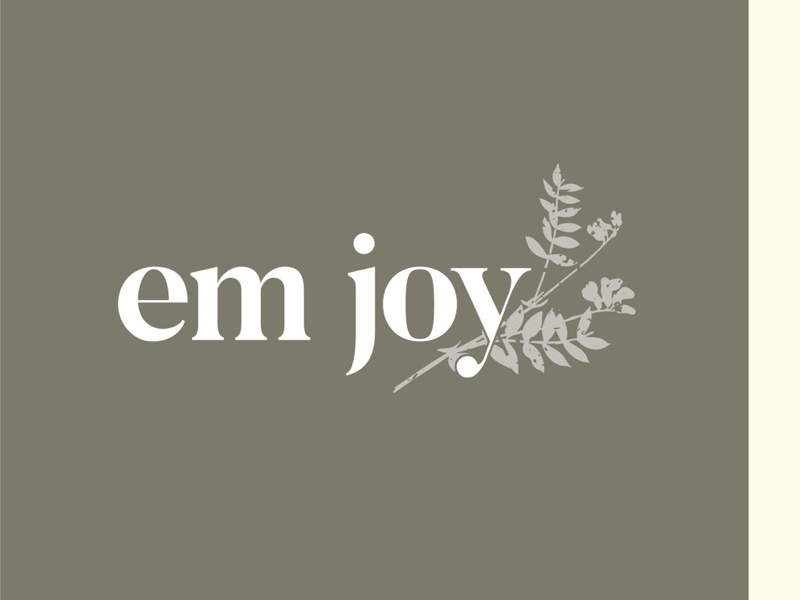 em joy blog type blogger blog logodesign logo design graphic design typography