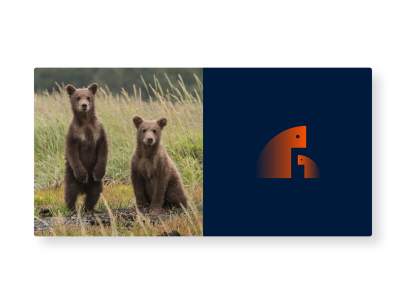 Bear Logo graphic design illustration flat icon brand identity branding vector logo design logo logo a day