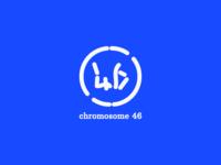 Chromosome 46 Logo design
