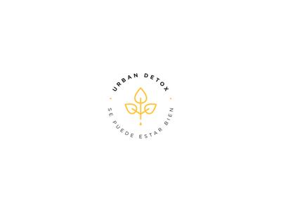 Urban Detox Branding Proposal logo design branding raw veggie detox logo