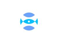 Fisheye Idea