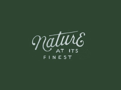Nature typography outdoors nature drawing lettering font hand-drawn type design