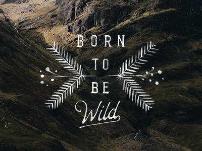 Born to be Wild typography adventure outdoors vintage drawn nature drawing lettering font hand-drawn type design