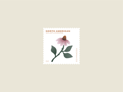 Wildflower stamp daily mark layout daisy plants coneflower wildflowers american north illustration echinacea postage stamp wildflower