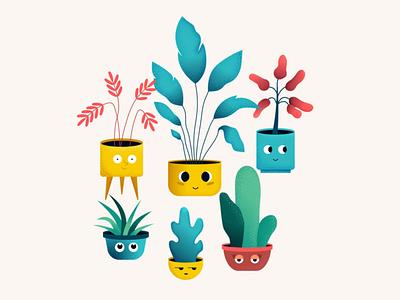 Many plants pots flowers indoors plants texture plant illustration