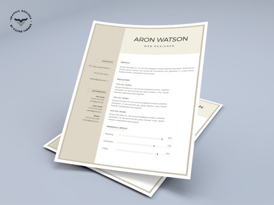 Professional CV Template