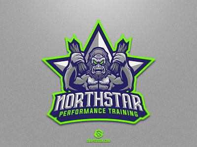 Northstar sports illustration design branding logotype sport esport gaming identity logo mascot