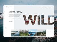 Alluring Norway
