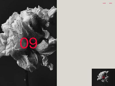 Flowers — 003 flower flowers grid infinite infinite grid webgl shader interaction drag drag and drop