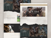 Stride Out Web Design