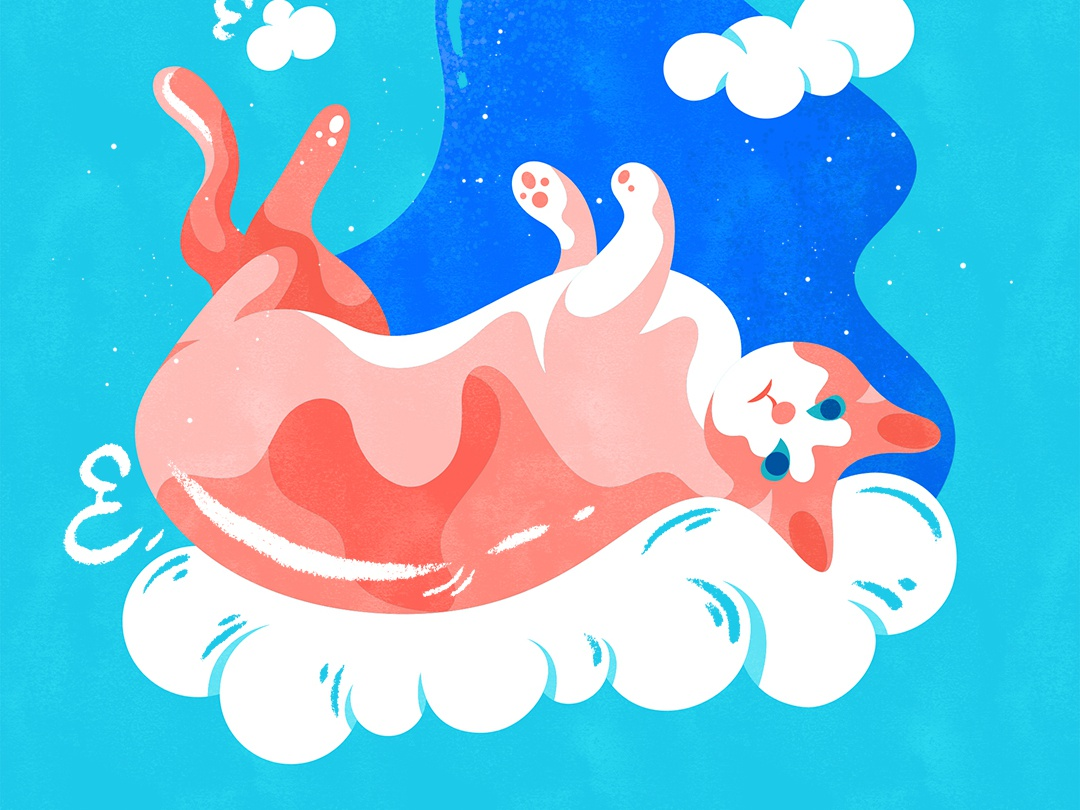 Feet up in the air | 四脚朝天 illustration design vector flat fourchars chinese idiom cloud cute cat hiwow