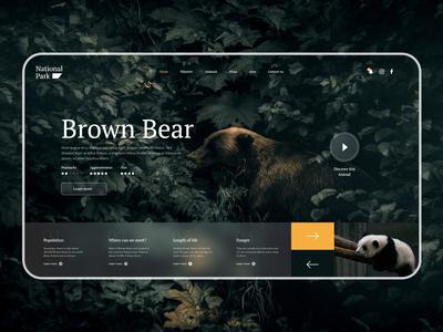 Daily UI #9 National Park Website