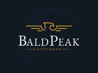 Line Art Style Eagle Logo for Bald Peak Software