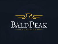 Line Art Style Eagle Logo for Bald Peak Software