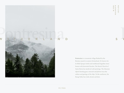 Typography Exercise #01 | Pontresina, Switzerland green gold poster layout grey graphics design typography