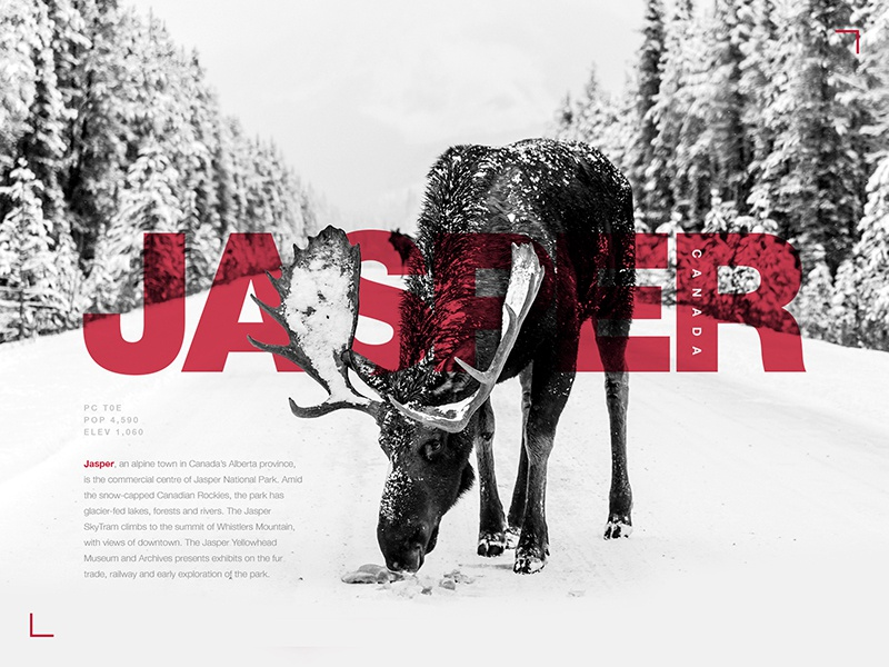 Typography Exercise #02   Jasper, Canada moose typography poster layout grey red graphics design