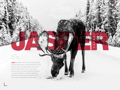 Typography Exercise #02 | Jasper, Canada moose typography poster layout grey red graphics design