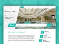 Baylaurel Landing Page Design Concept