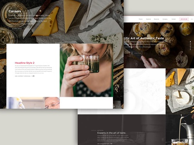 Website Exploration images website design ui web