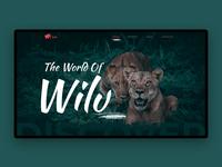 Wildlife Website Banner