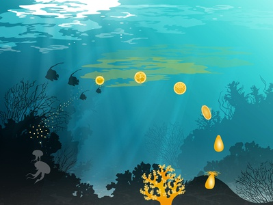 Coral Reef Life Cycle illustrator illustration science nature sea ocean vector illustration vector art vector infographic coral reef coral