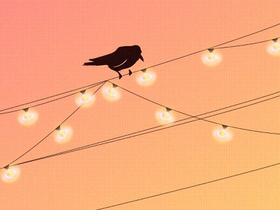 Sunset Crow lightbulbs lines illustration illustrator simple design silhouette sunset string lightbulb light