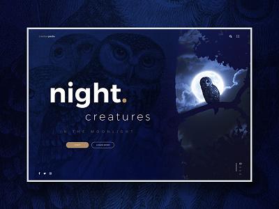 Night Creatures website design concept ui ux webdesign website