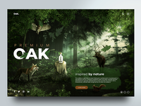 Oak Vodka website design concept
